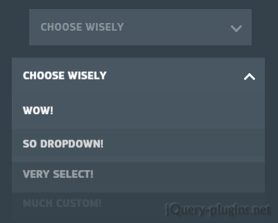 Animated Custom Select with CSS3 and jQuery