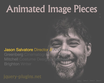 Animated Image Pieces