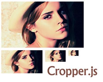 Cropper.js – JavaScript Image Cropper
