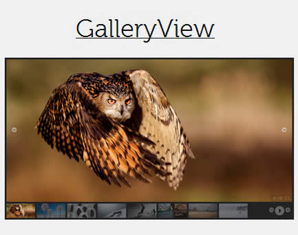 GalleryView – Flexible jQuery Photo Gallery Plugin