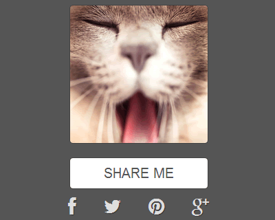 HideShare – jQuery Plugin for Social Sharing