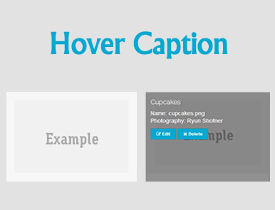 Hover Caption jQuery Plugin