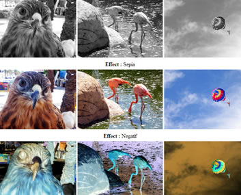 Image Color Up jQuery Plugin