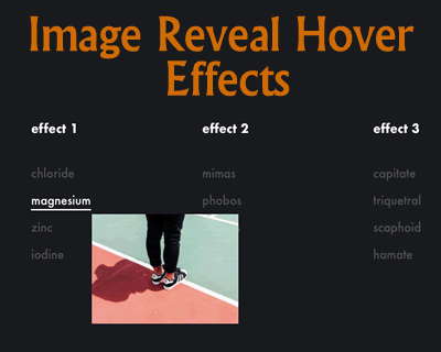 Image Reveal Hover Effects