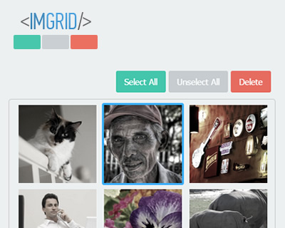 IMGRID – jQuery Image Selection Plugin