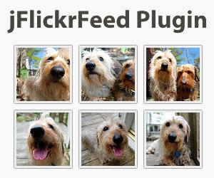 jFlickrFeed Plugin
