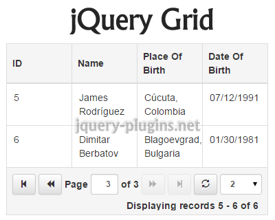 jQuery Grid Plugin