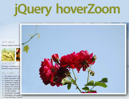 jQuery hoverZoom – A Lightbox and Gallery Alternative