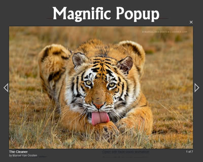 Magnific Popup – Responsive jQuery Lightbox Plugin