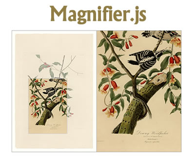 Magnifier.js – Javascript Library for Magnifying Glass Effect