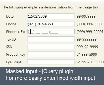 Masked Input jQuery Plugin