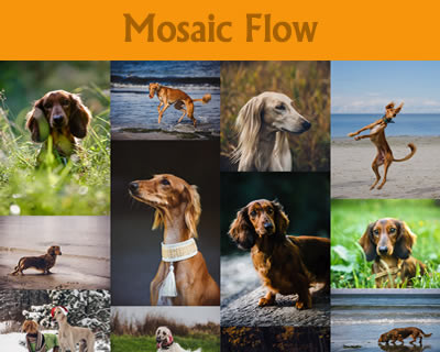 Mosaic Flow – Pinterest Like Responsive Image Grid
