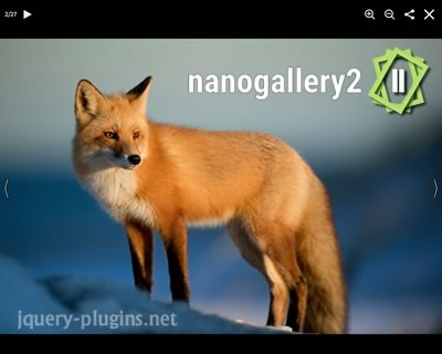 nanogallery2 – Beautiful Image Galleries with Javascript
