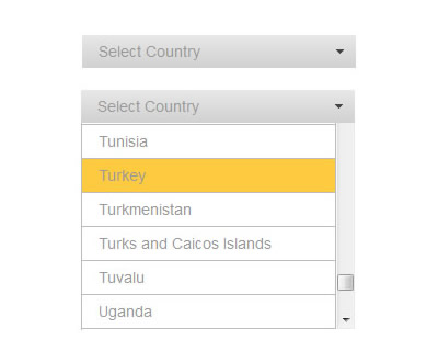 Selectify – jQuery Plugin for Customizable Select Box