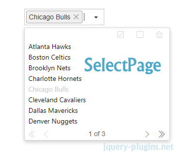 SelectPage – Simple and Powerful Selection Plugin