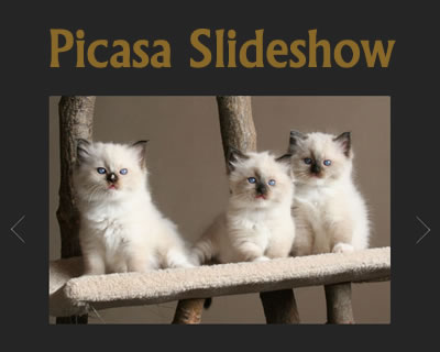 Simple Picasa Slideshow Plugin