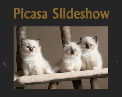 Simple Picasa Slideshow Plugin