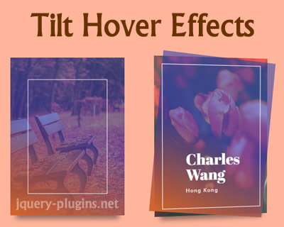 Tilt Hover Effects with CSS and Javascript
