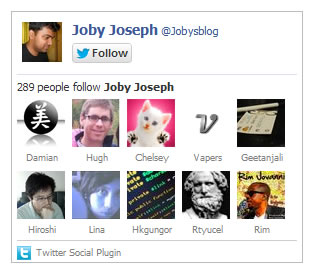 Twitter Follow Box jQuery Plugin