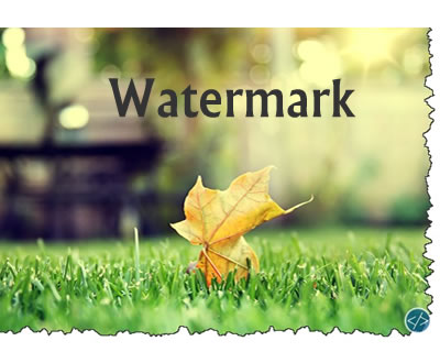 Watermark – Add Watermark on Images